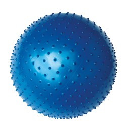 Gimnastinis kamuolys